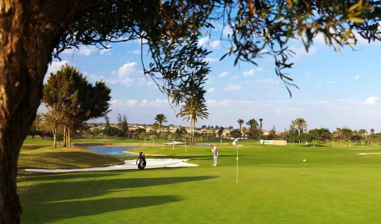 Hotel Elba Palace Golf