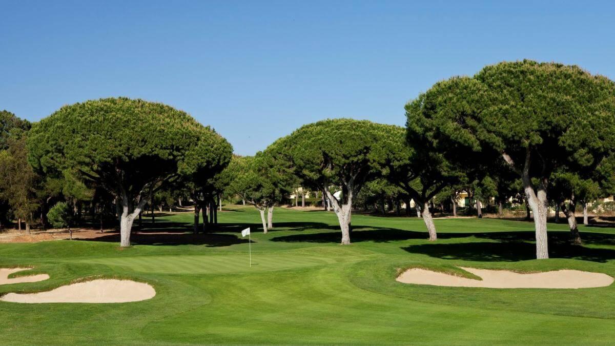 Dom Pedro Pinhal Golf Course